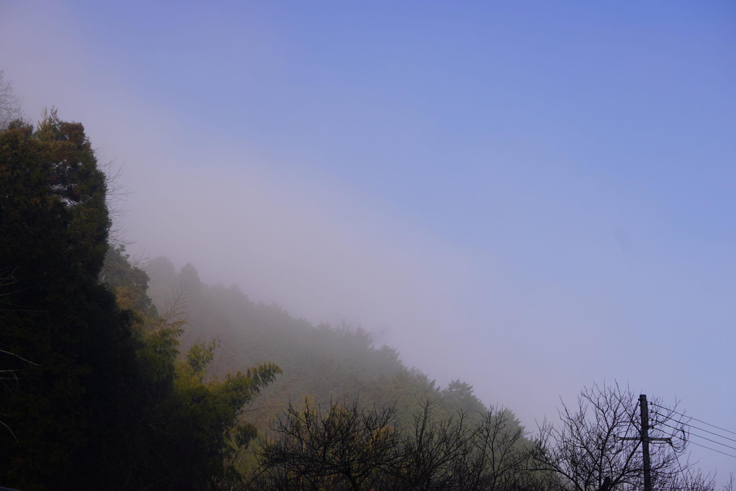 朝霞の炭山